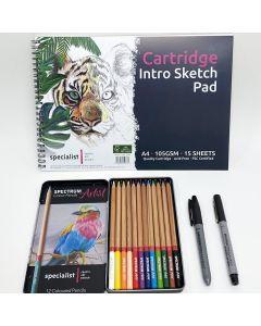 Colour Pencil & Doodle Intro Kit