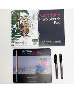 Colour Pencil & Doodle Artist Kit